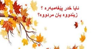 FB_IMG_1456163355893