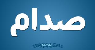 صدام-SDAM