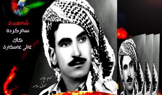 phoca_thumb_l_shahed ali askari