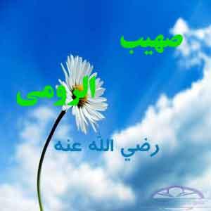sohaeb