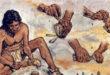 121052018_araqaa